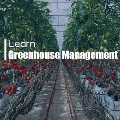 آموزش مدیریت گلخانه