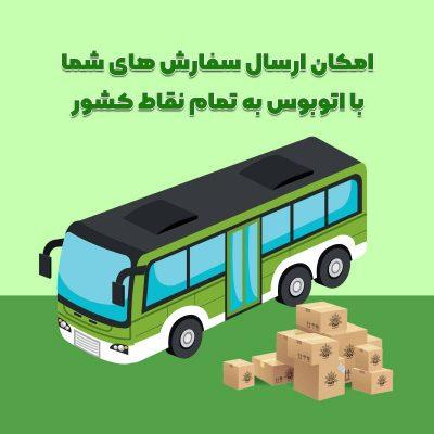 روش ارسال سفارش با اتوبوس ترمینال به طور کلی سه روش برای ارسال محصولات دیلمون در نظر گرفته شده است